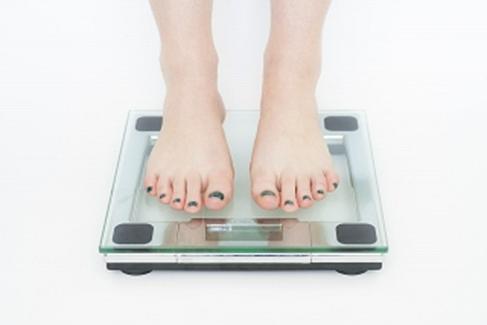 ダイエットサポートの流れ